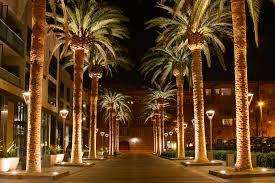 San Jose SEO Courses and Social Media Online Training